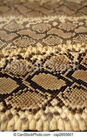 Background snake skin pattern brown - csp2655601