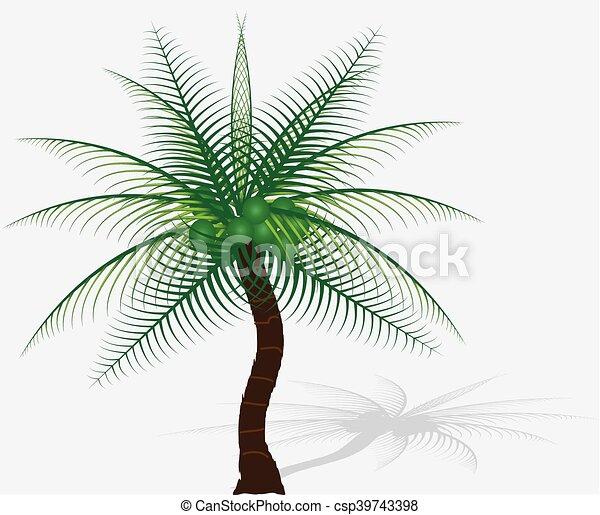 background-vector, boompje, vrijstaand, verzameling, plam, witte  - csp39743398