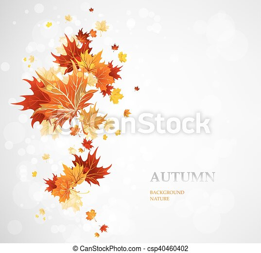 Background with autumn leaves - csp40460402