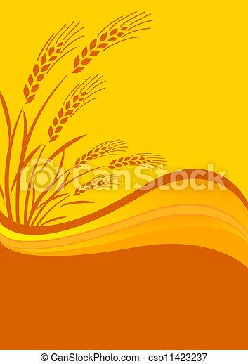 background with cereal crop - csp11423237