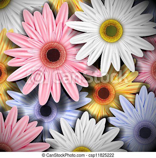 Background with colorful gerberas - csp11825222