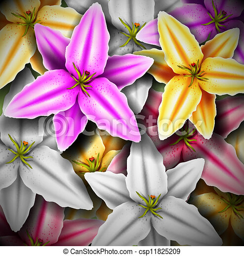 Background with colorful lilies - csp11825209