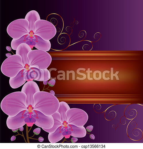 Background with exotic flower orchids, decorated with golden curls. Place for text - csp13566134