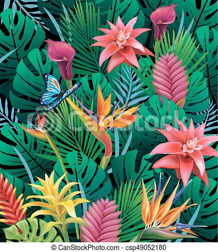 Background with exotic tropical flowers - csp49052180