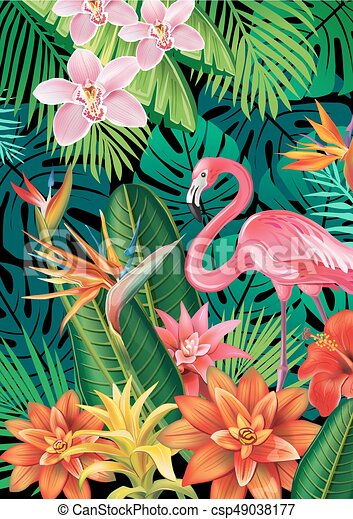 Background with exotic tropical flowers - csp49038177