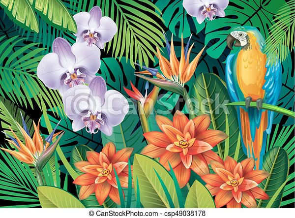 Background with exotic tropical flowers - csp49038178