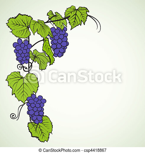 background with grapes - csp4418867