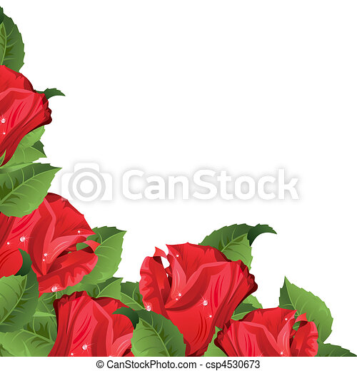 Background with roses - csp4530673