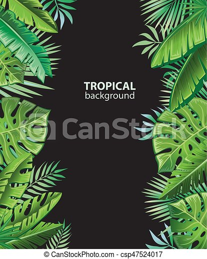 Background with tropical plants - csp47524017