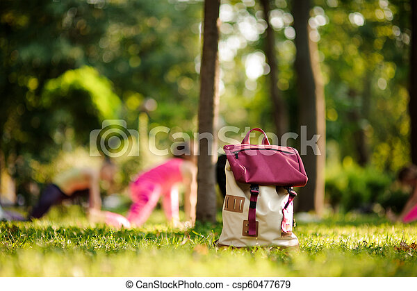 Backpack on grass in a green park on summer day - csp60477679