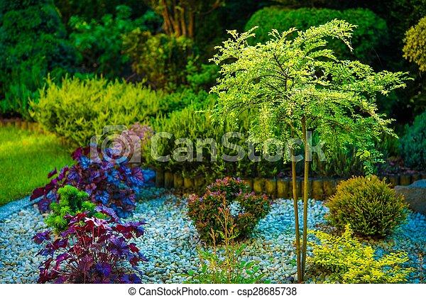 Backyard Garden Closeup - csp28685738