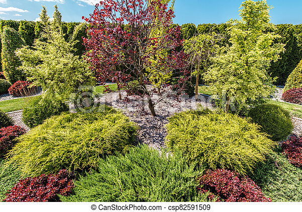 Backyard Garden Full of Colorful Decorative Trees - csp82591509