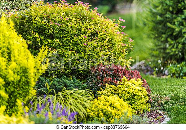 Backyard Garden Plants Close Up - csp83763664