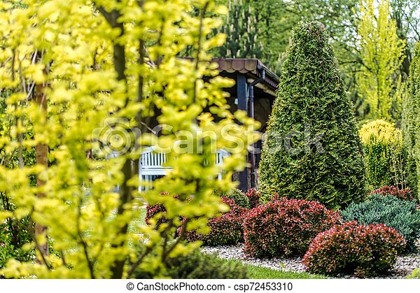 Backyard Garden Plants - csp72453310