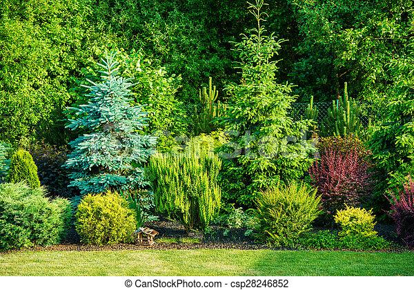 Backyard Garden - csp28246852