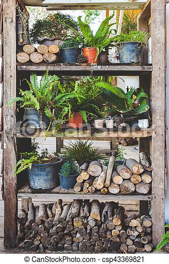 backyard garden - csp43369821