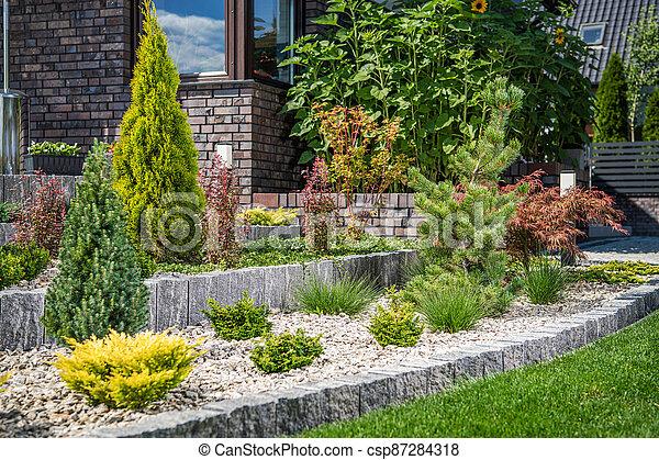 Backyard Rockery Garden with Small Plants - csp87284318