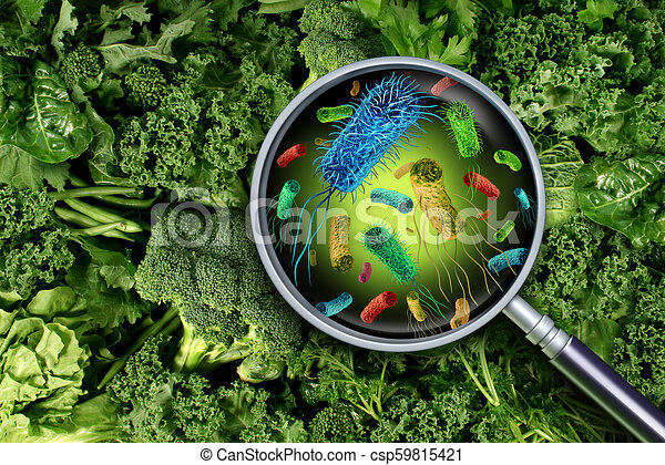 Bacteria And Germs On Vegetables - csp59815421