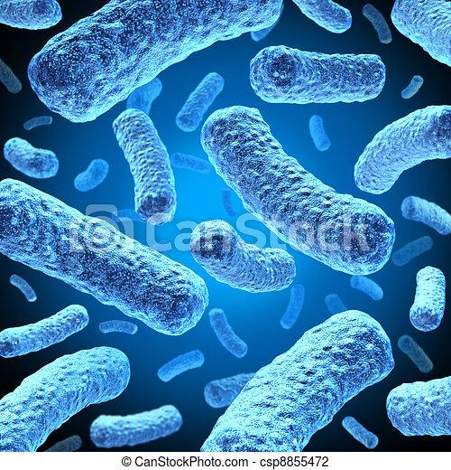 Bacteria - csp8855472