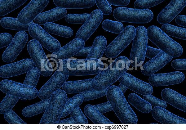 Bacteria  - csp6997027