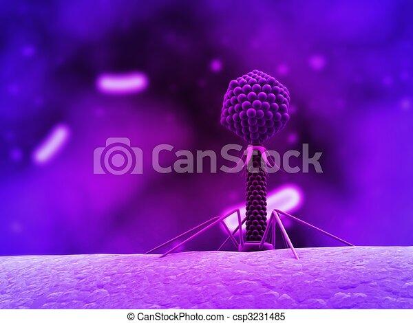 bacteriophage  - csp3231485