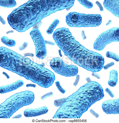 Bacterium and Bacteria - csp8855456