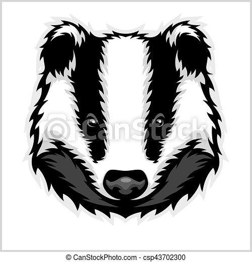 Badger Head Drawing