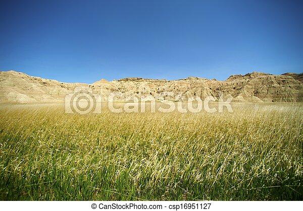 Badlands Meadow - csp16951127