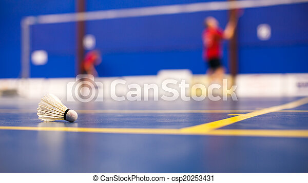 Badminton - badminton courts with two shuttlecocks  - csp20253431