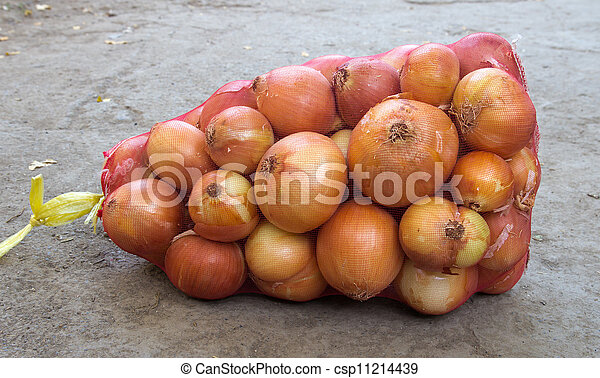 bag of onions - csp11214439