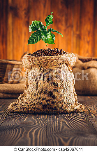 Bag of roasted coffee and coffee plant on wooden table. - csp42067641