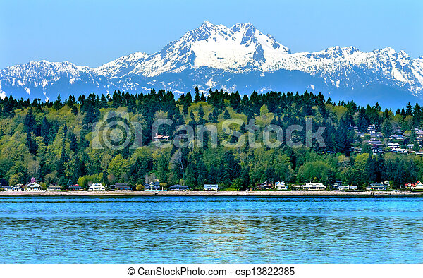 Bainbridge Island Puget Sound Mount Olympus Snow Mountains Olympic National Park Washington State Pacific Northwest Closeup Evergreen - csp13822385