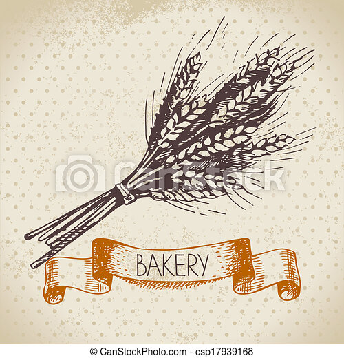 Bakery sketch background. Vintage hand drawn illustration of wheat - csp17939168