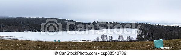 balíkovat, krajina, balený, zima, bojiště, -, les, maličkost - csp88540736