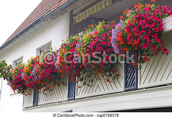balcony with flowers house balcony with railing covered in flowers