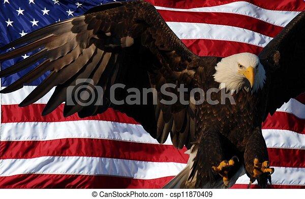Bald Eagle American Flag Bald Eagle With An American Flag Background
