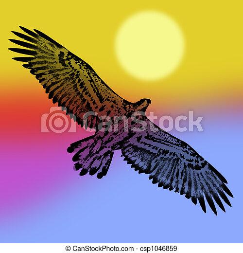 bald eagle soaring at sunset stock illustration search vector rh canstockphoto com eagles clip art free eagles clip art