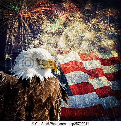 Bald Eagle &  Fireworks - csp25703041