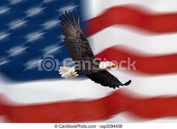 Bald eagle flying in front of flag - csp3394438