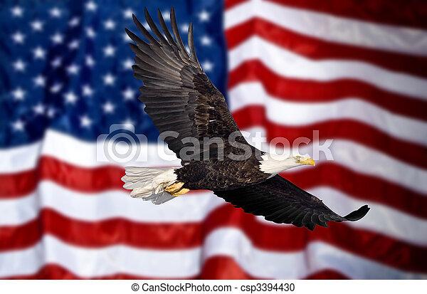 Bald eagle flying in front of flag - csp3394430