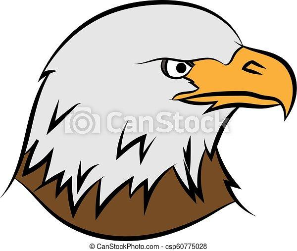 Bald eagle on white - csp60775028