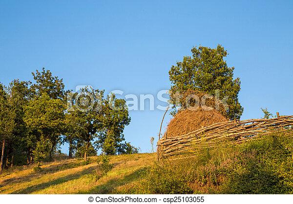 Bale of hay  - csp25103055