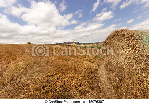 bale of hay - csp15076307