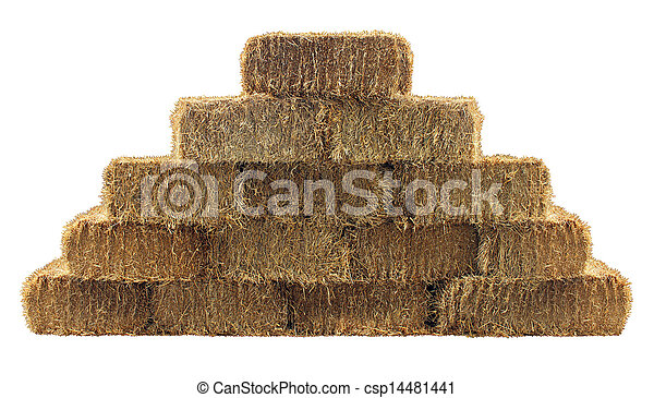 Bale of Hay Wall - csp14481441