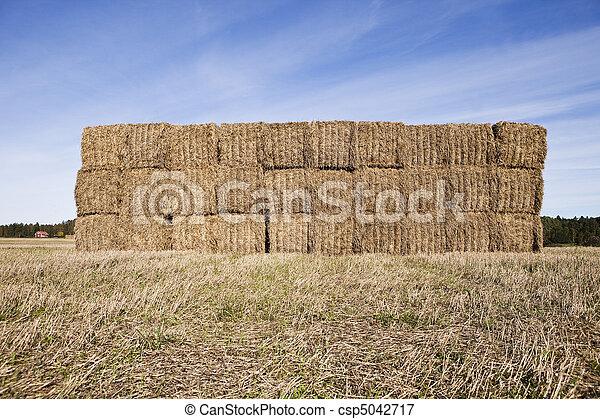 Bale of Haystack - csp5042717