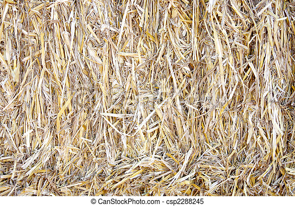 Bale of straw - csp2288245