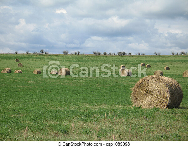 bales of hay in a field - csp1083098