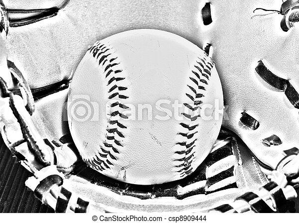 Ball and glove - csp8909444