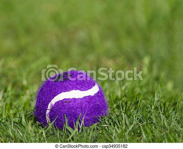 Ball - csp34935182