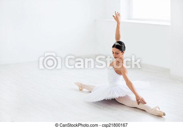 Ballet - csp21800167